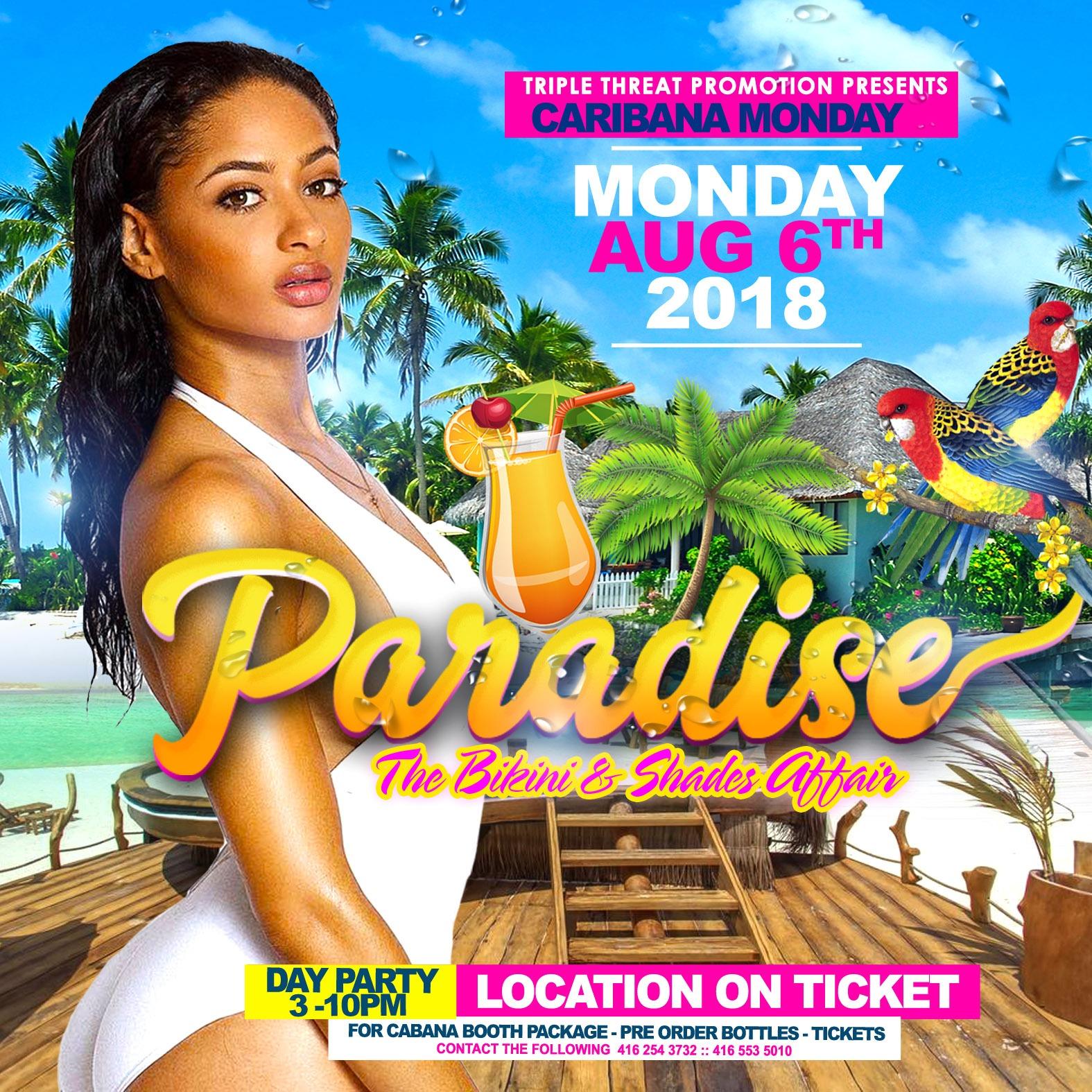 Paradise - The Bikini and Shades After