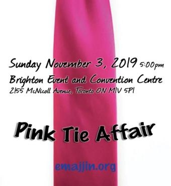 Emajjin Children's Foundation - 6th Annual Gala - Pink Tie Affair