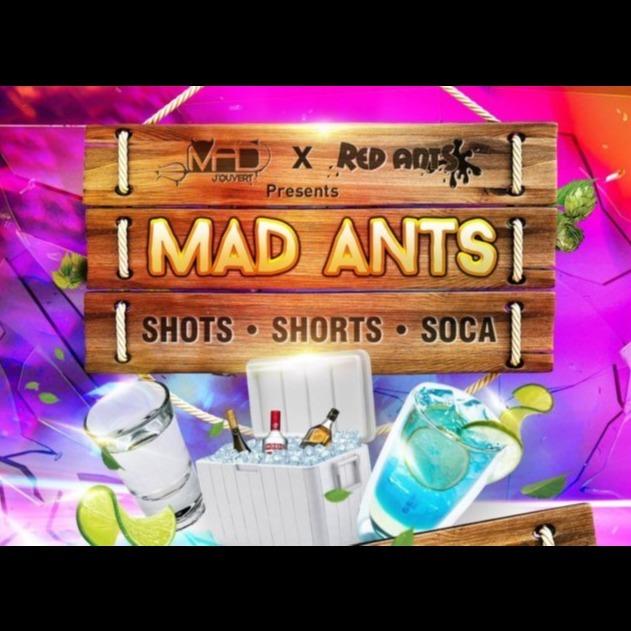 Mad Ants Cooler Fete 2020 |  Trinidad Carnival