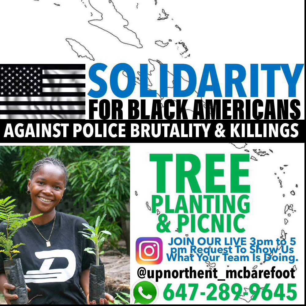 SOLIDARITY FOR BLACK AMERICANS TREE PLANTING  & PICNIC