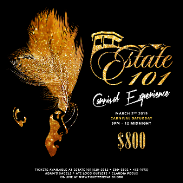 Estate101 Ultra Premium All Inclusive Carnival Experience