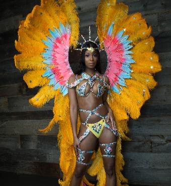Paradise - VIP Carnival - Toronto Revellers