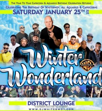 Winter Wonderland - Capricorn and Aquarius Birthday Celebrations
