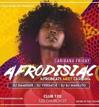 AFRODISIAC Afrobeats meet Caribana 2020 | Toronto