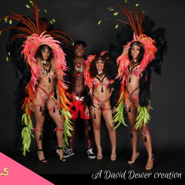 Cock - Tails : Miami Carnival