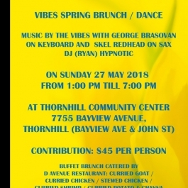 VIBES SPRING BRUNCH / DANCE