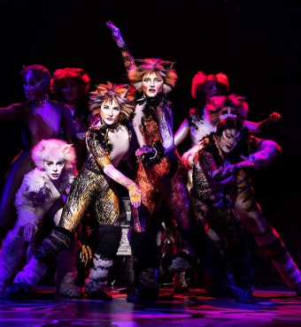 Cats Musical Toronto Tickets | 2019 Nov 29