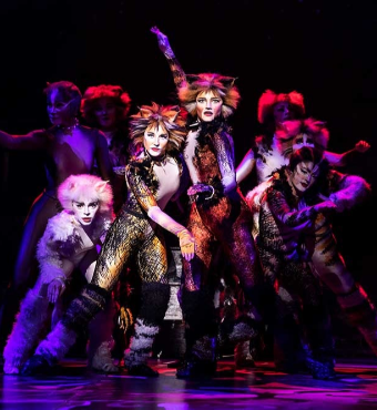 Cats Musical In Toronto Tickets | 2019 Dec 03