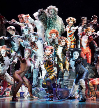 Cats The Musical In Toronto Tickets | 2019 Dec 04