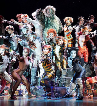 Cats Musical In Toronto Tickets | 2019 Dec 05