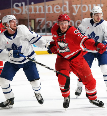 Toronto Marlies vs. Charlotte Checkers Tickets | 2020 Feb 01