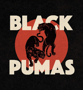 Black Pumas | Musical Concert | Tickets